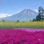 【6月初旬】温泉のニセコ&ウニの積丹半島3泊4日