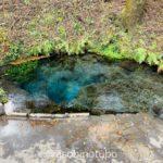 【特集:男池】大分、紅葉の宝泉寺温泉に泊まる1泊2日
